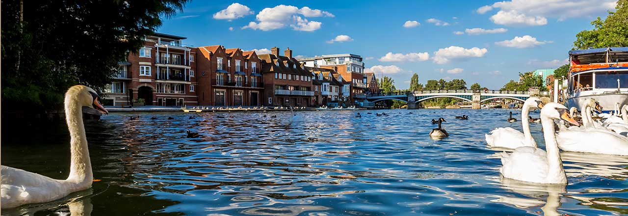 A view of the river Thames
